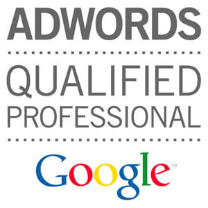 addwords-professional-in-udaipur