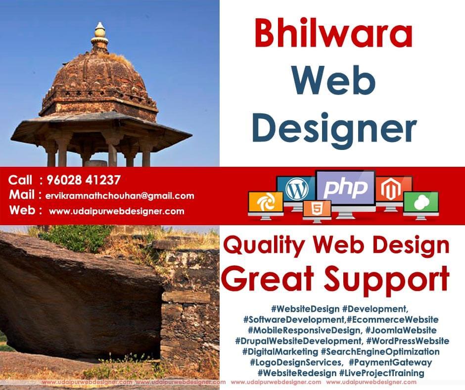 Bhilwara Web Designer