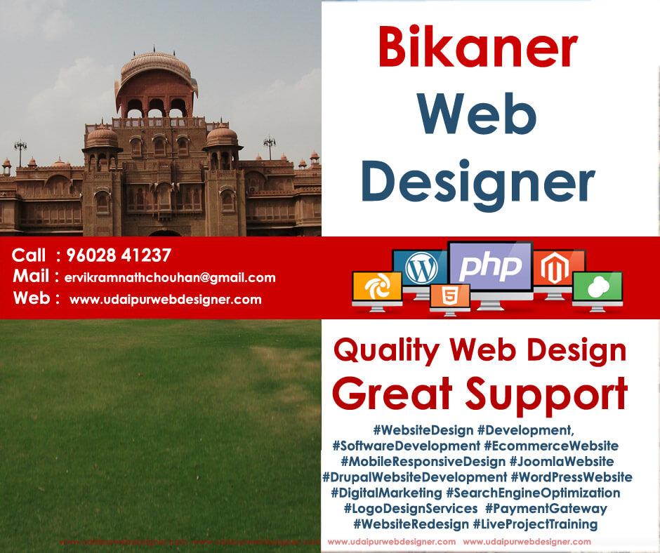 Web Designer Bikaner Web Design CompanyBikaner