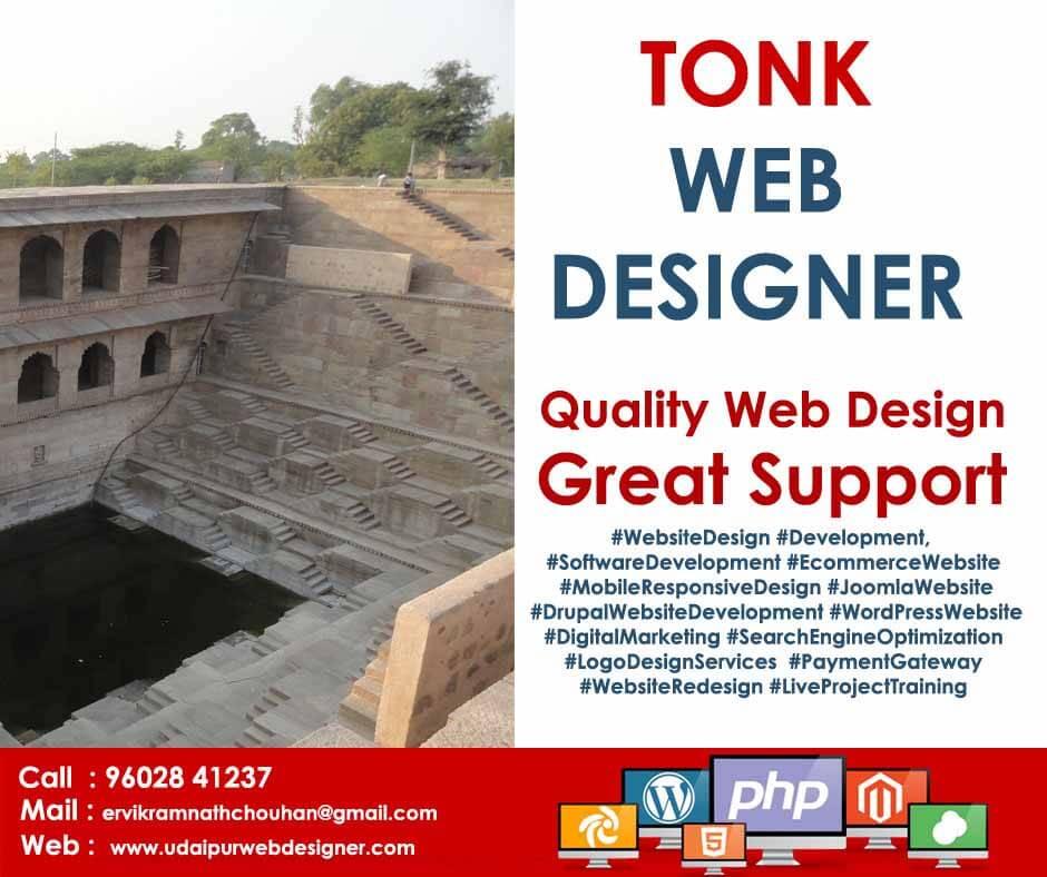Web designer in tonk