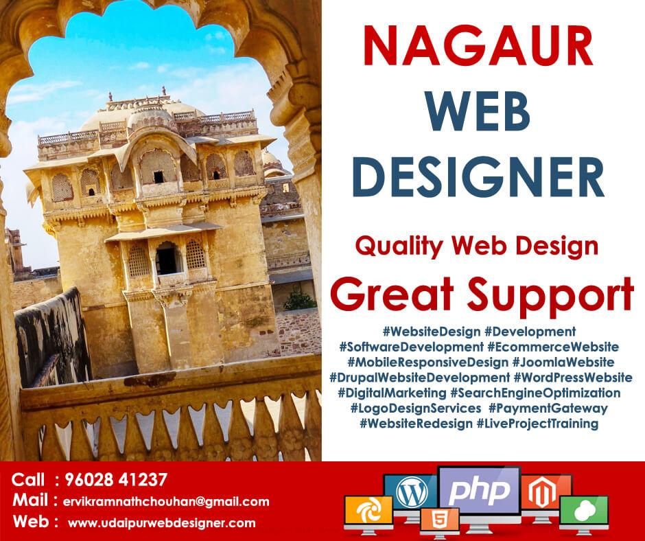 Web Designer Nagaur, rajasthan