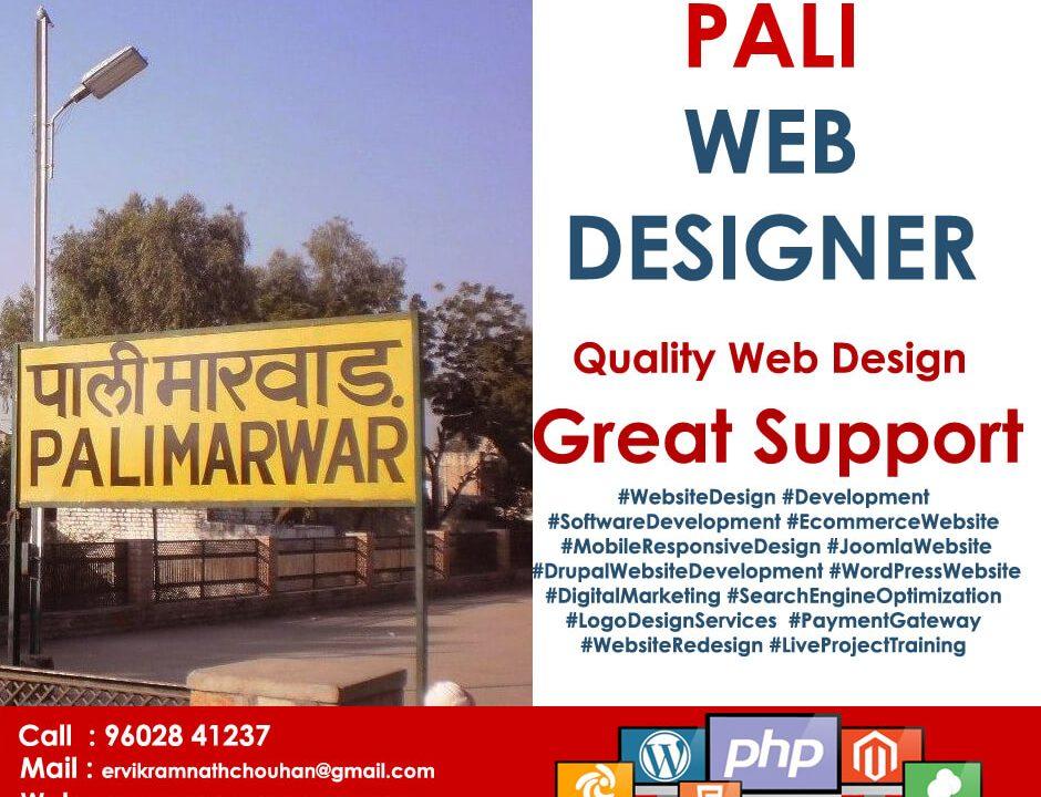 Web Designer Pali