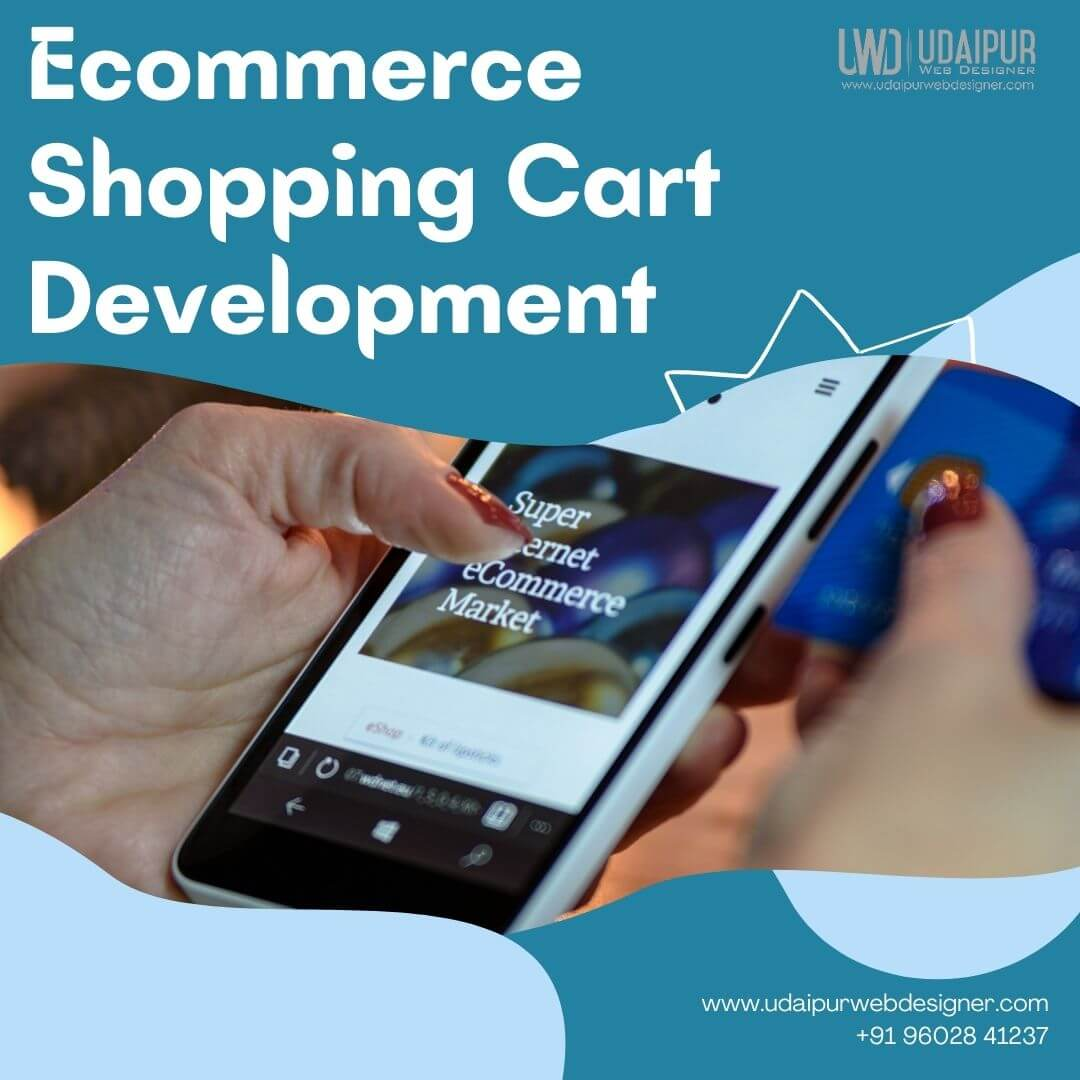 Ecommerce Shopping Cart Development in Udaipur Rajasthan